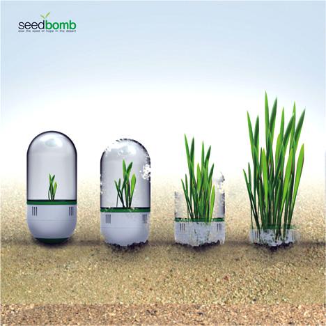 seedbomb-2