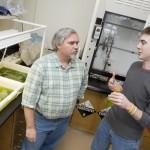 Un biocarburant miracle ?