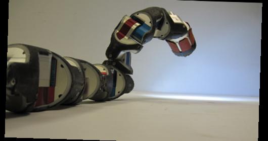 Snakebot, le robot serpent